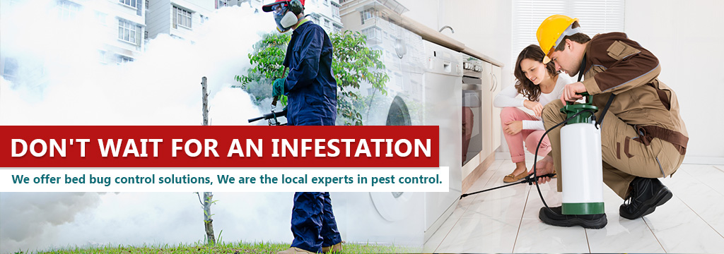 Fast Pest Control Companies in Moreno Valley CA